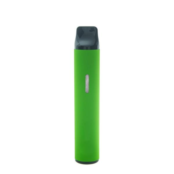 Cigarette Filters, NIC-OUT Disposable Holders (300) 10 Packs - 2 FREE LIGHTERS! #3 image